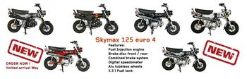 SKYMAX 125 EURO 4  DARK