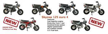 SKYMAX 125 CLUB S, EURO 4,  VIT